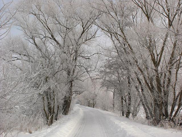 cold-13868_640