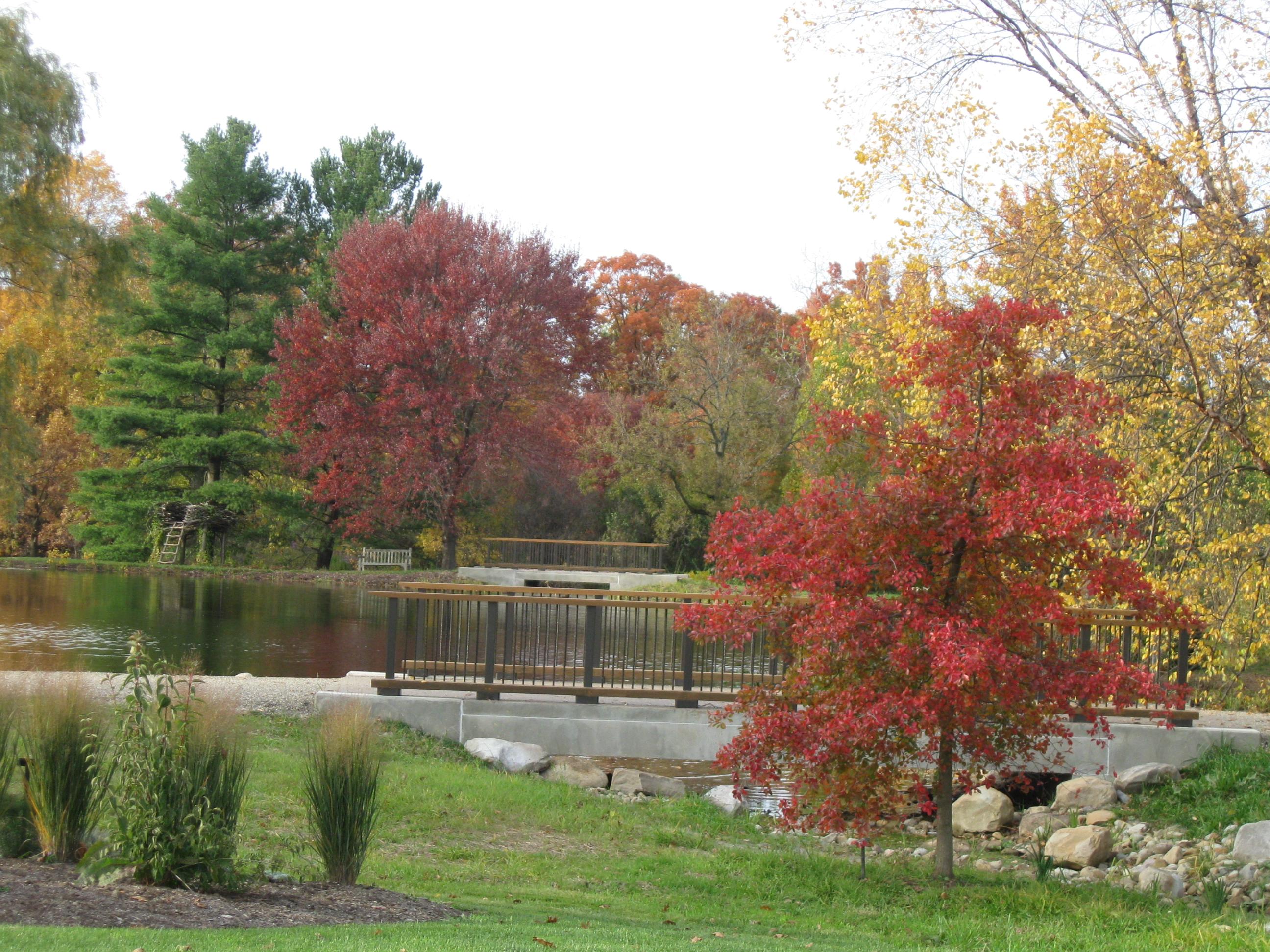 Holden Arboretum (21)